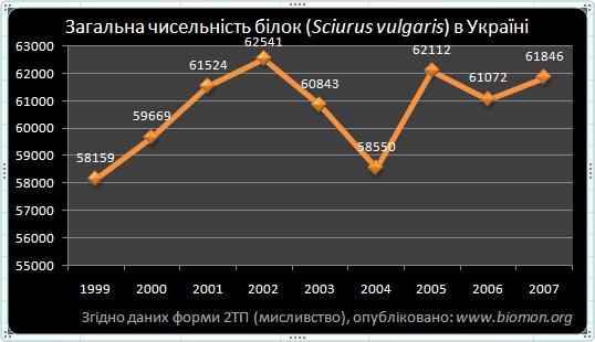 3_3_sciurus_vulgaris.jpg