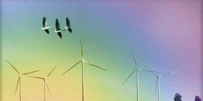 Посібник є результатом спільної роботи, спрямованої на забезпечення збільшення використання відновлюваних джерел енергії із врахуванням того, що реалізація вітрових інвестицій не може бути здійснена без дотримання пріоритетів у галузі охорони птахів.