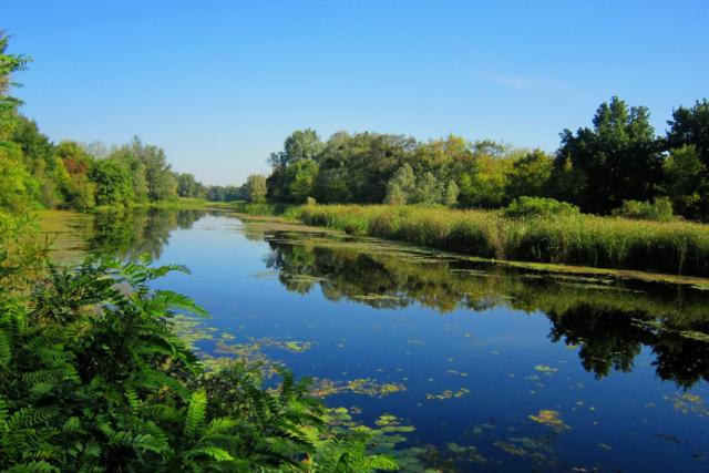 У проекті Генплану Києва заплановане урізання заповідних територій